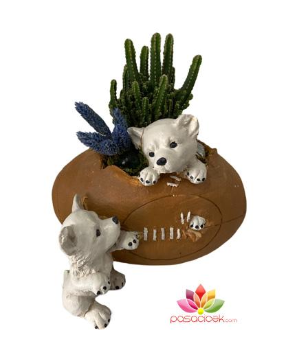 Küçük Köpek Figürlü Terraryum