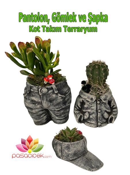 Takım Kot Terraryum
